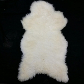 Natural white sheep skin - Ovis Aries