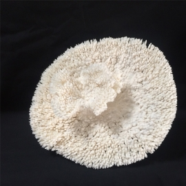 Corail table