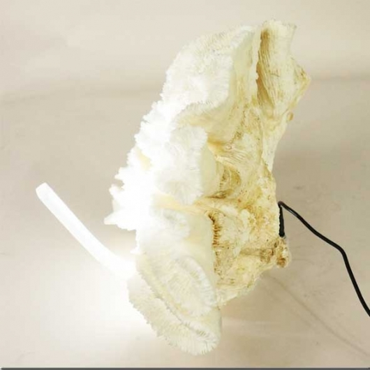 'Lamel' coral on resin base with led lighting